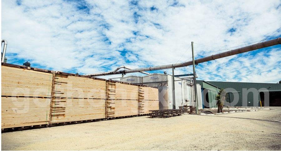 Bán gỗ thông xẻ nhập khẩu tại quận 3