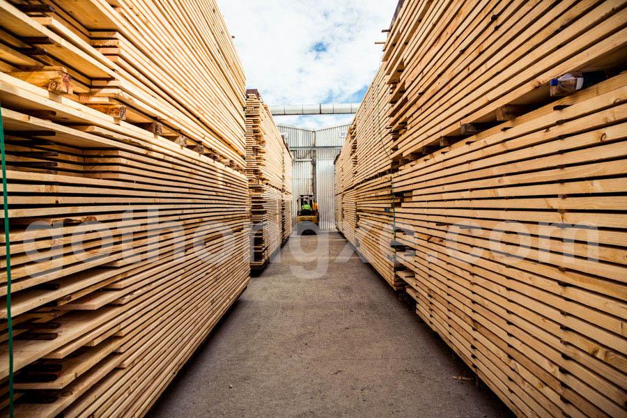 Bán gỗ thông xẻ nhập khẩu tại quận 9