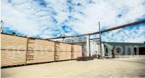 Bán gỗ thông xẻ nhập khẩu tại quân 7
